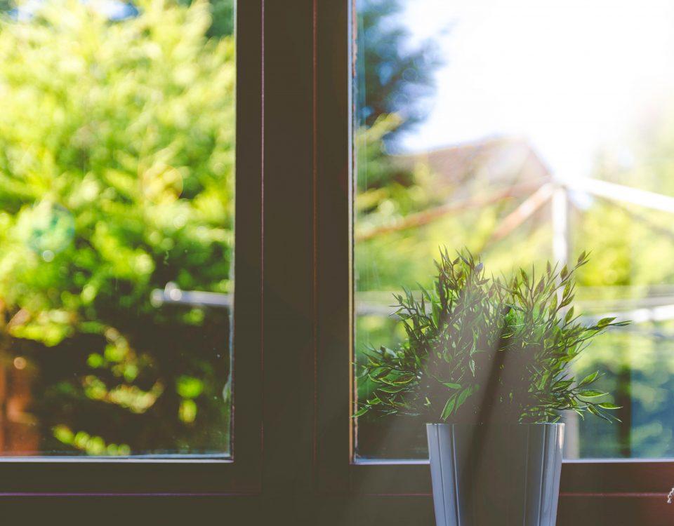 Soligt fönster